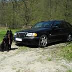Mein Auto und Hund ;)